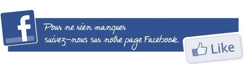 Page Facebook du Judo Club Navarrenx